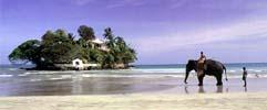 Safari and Exotic Beaches 3